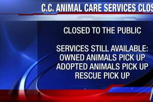 Corpus Christi Animal Care Service building closed to public