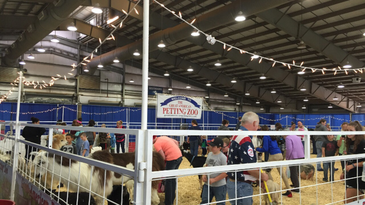 Goat-Tastic goats at the 2015 Tulsa State Fair