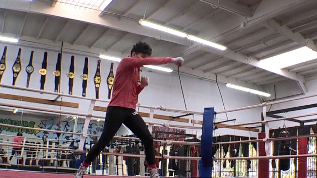 CV Boxer Olympics.png