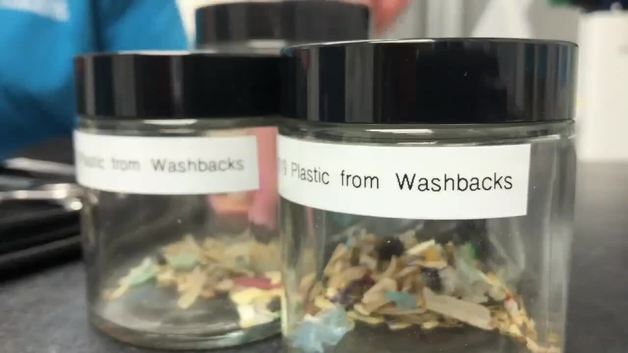 plastic pieces found in washback turtles at Gumbo Limbo Nature Center