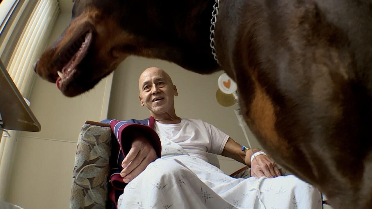 wptv-wpb-hospice-dog.jpg