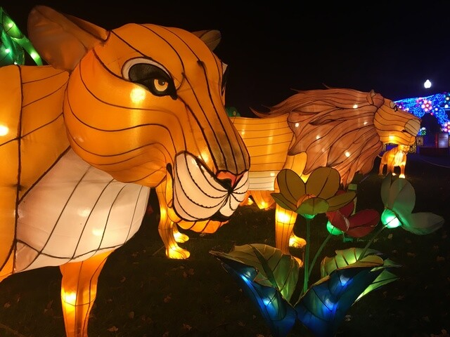 PHOTOS: Chinese Lantern Festival at Indiana State Fairgrounds