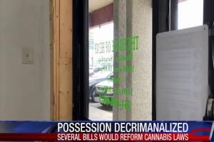 Marijuana reform bills left pending in committee