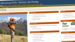 MT FWP is switching to regular paper licenses