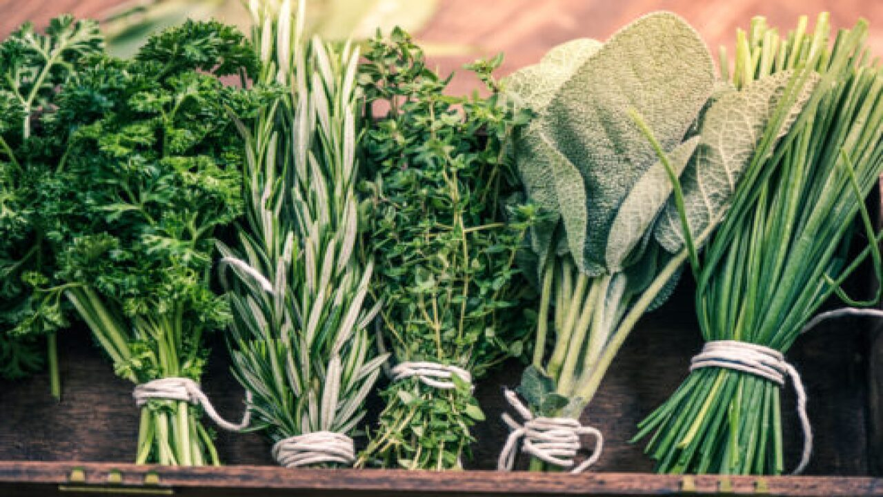 The Best Way To Store Cilantro, Basil And Other Fresh Herbs