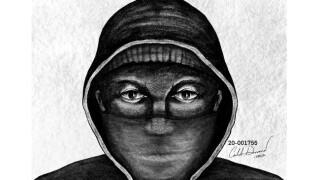 kalamazoo armed robbery knollwood avenue suspect sketch.jpg