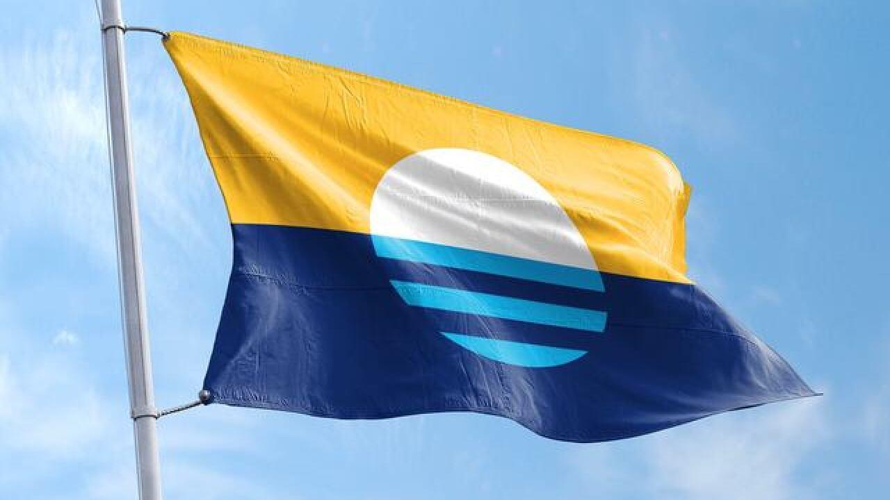 Vote for Milwaukee's new flag