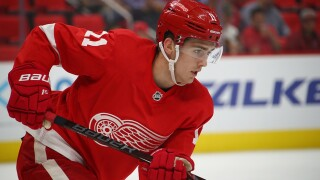 Red Wings assign 4 to Griffins, including Filip Zadina