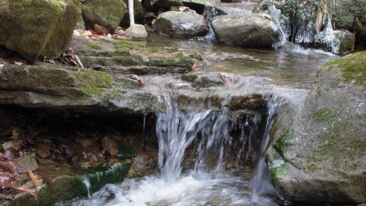 Waterfall Winter.JPG