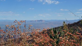 1024px-San_Diego_National_Wildlife_Refuge_(28884246043).jpg