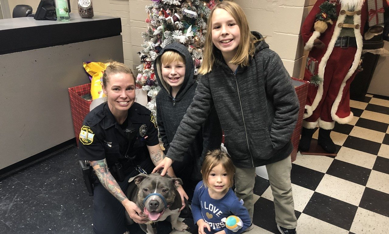 Photos: 'It's like an early Christmas present' Norfolk family reunited with missing dog 'Turkey'