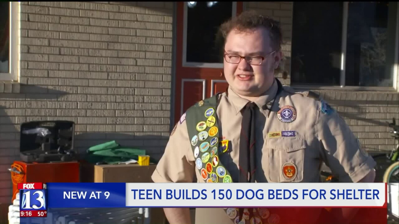 Roy teen builds 150 dog beds for Davis County Animal Shelter