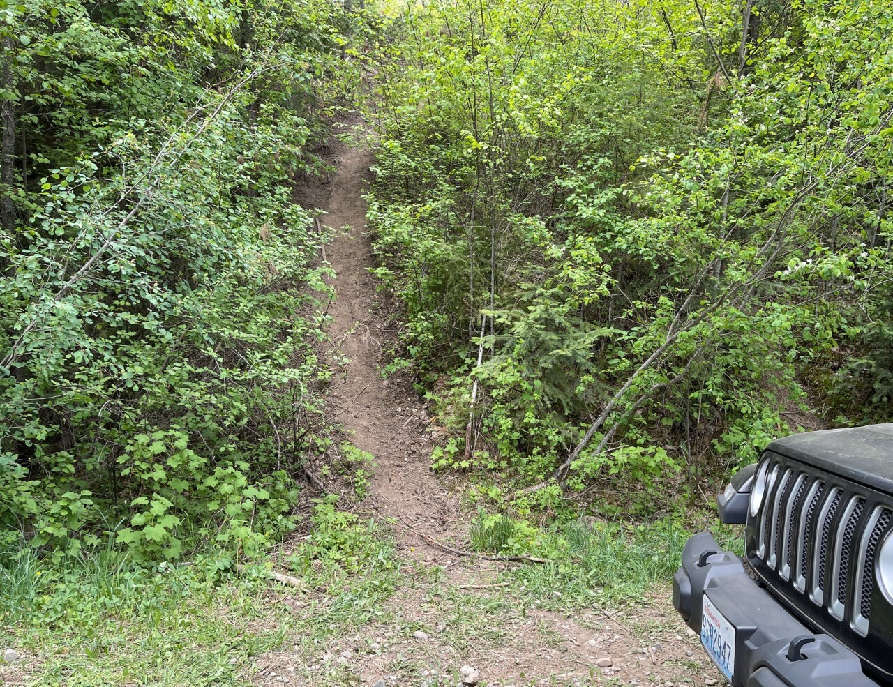thumbnail_How unauthorized trails grow.jpg
