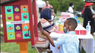 Detroit organization partners with Little Free Library to get diverse books into hands of local kids