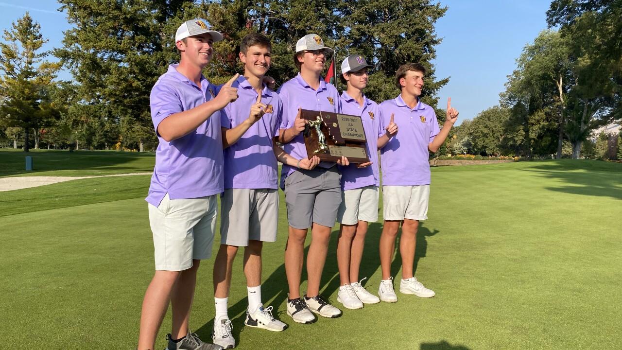 Sentinel boys golf