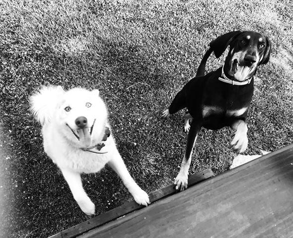 Sam and Sakari