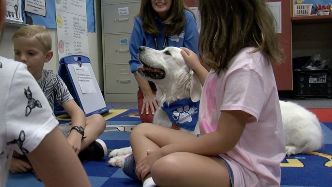 Therapy dog at East Valley elementary school