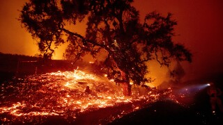 Hundreds evacuated as wildfire fueled by monster winds races through California