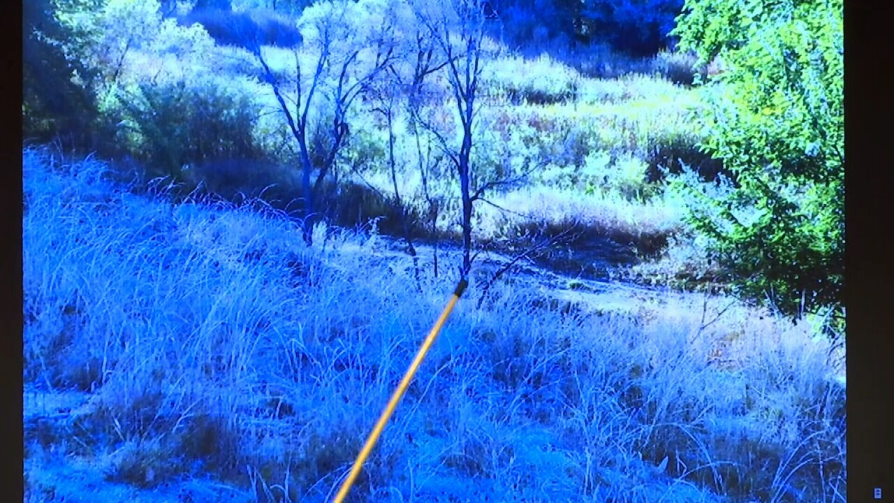 031721 BODY FOUND TREE.jpg