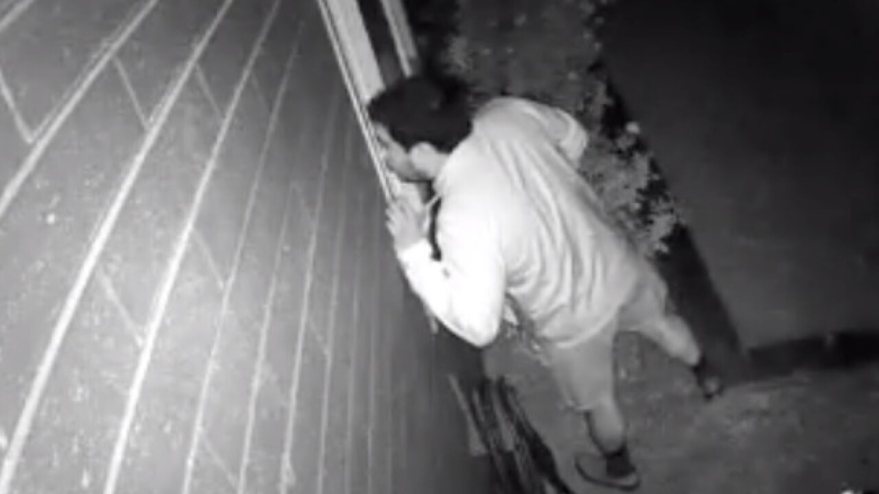 VIDEO: Scottsdale police looking for peeping Tom