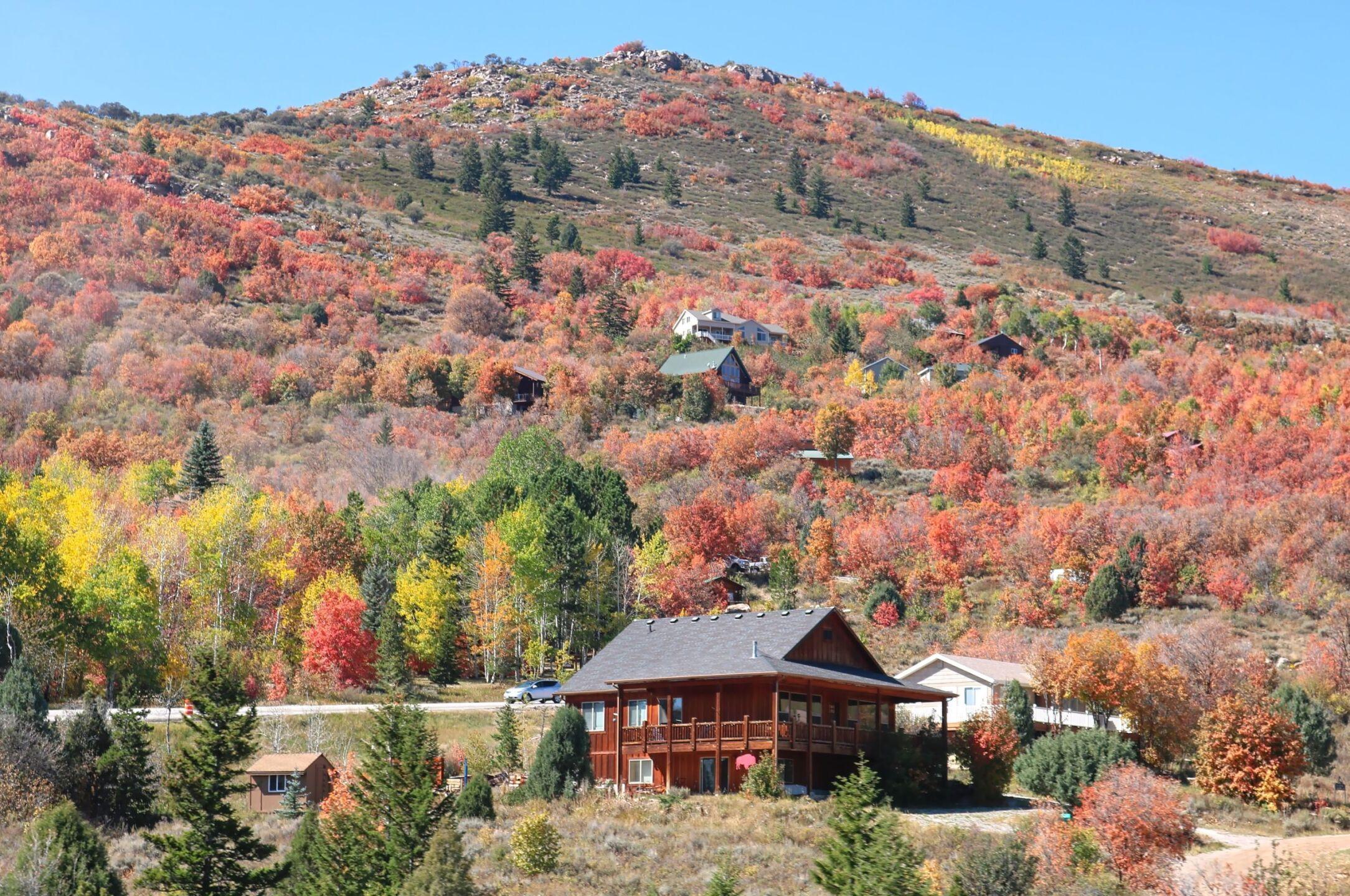 Carol Dyer Bear Lake valley.jpg