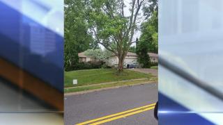PHOTOS: Storms leave damage for communities across KC metro area (6/17/17)