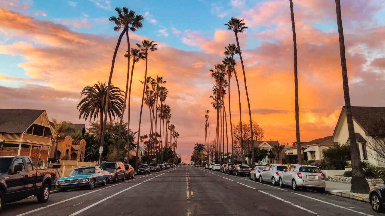 University Heights sunset with palm trees