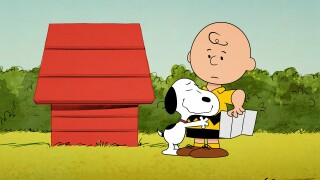 TV-The Snoopy Show