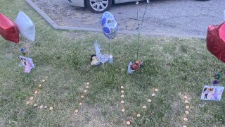 Olivia Jansen memorial.jpg