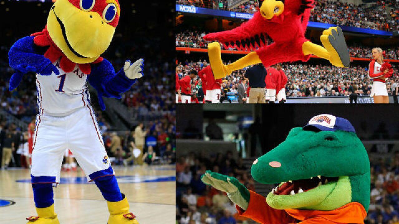 quiz which college mascot are you
