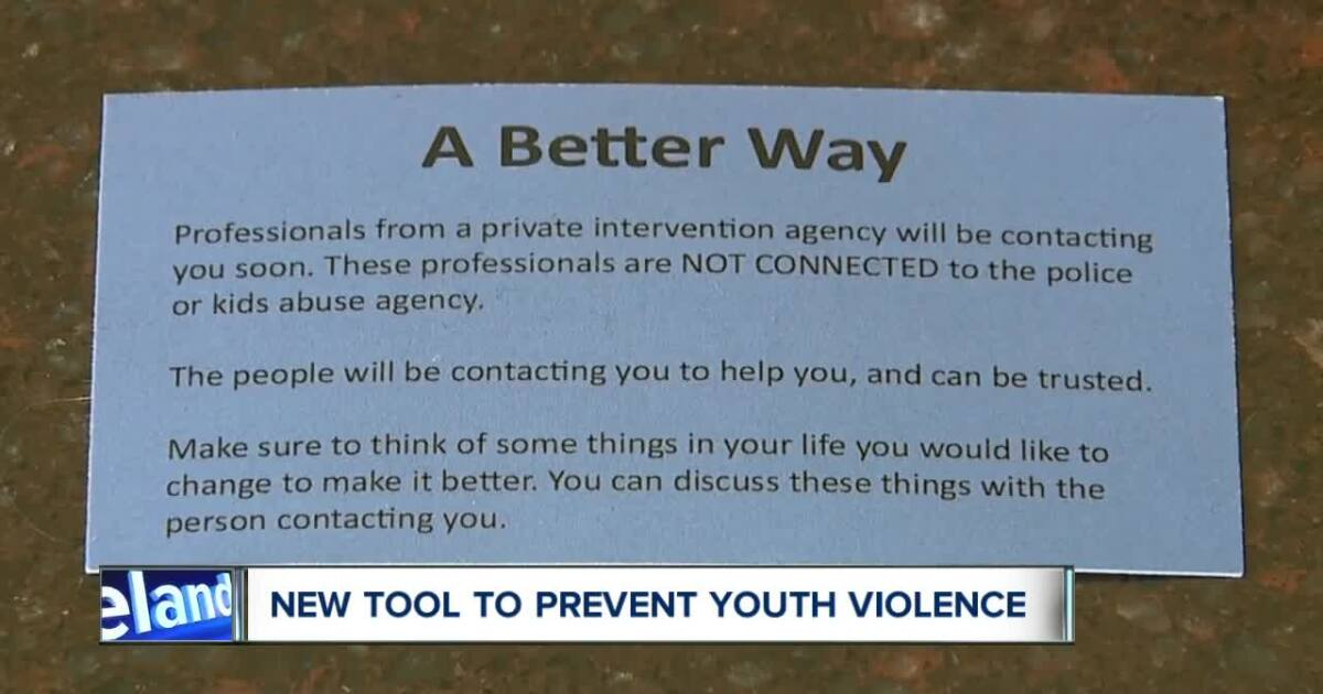 Unique partnership tackles youth violence