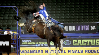 Richie Champion 2020 NFR.png