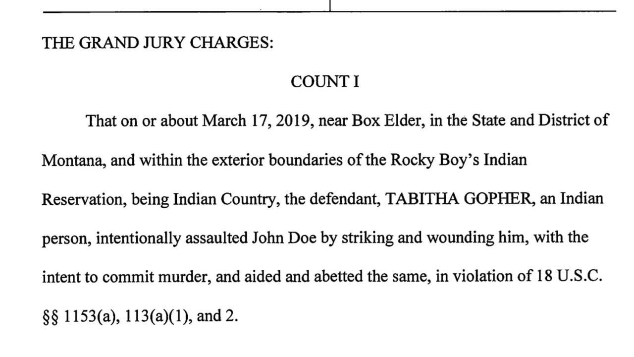Court documents state the alleged assault happened in March 2019 near Box Elder.