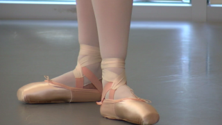 ballet slippers.PNG