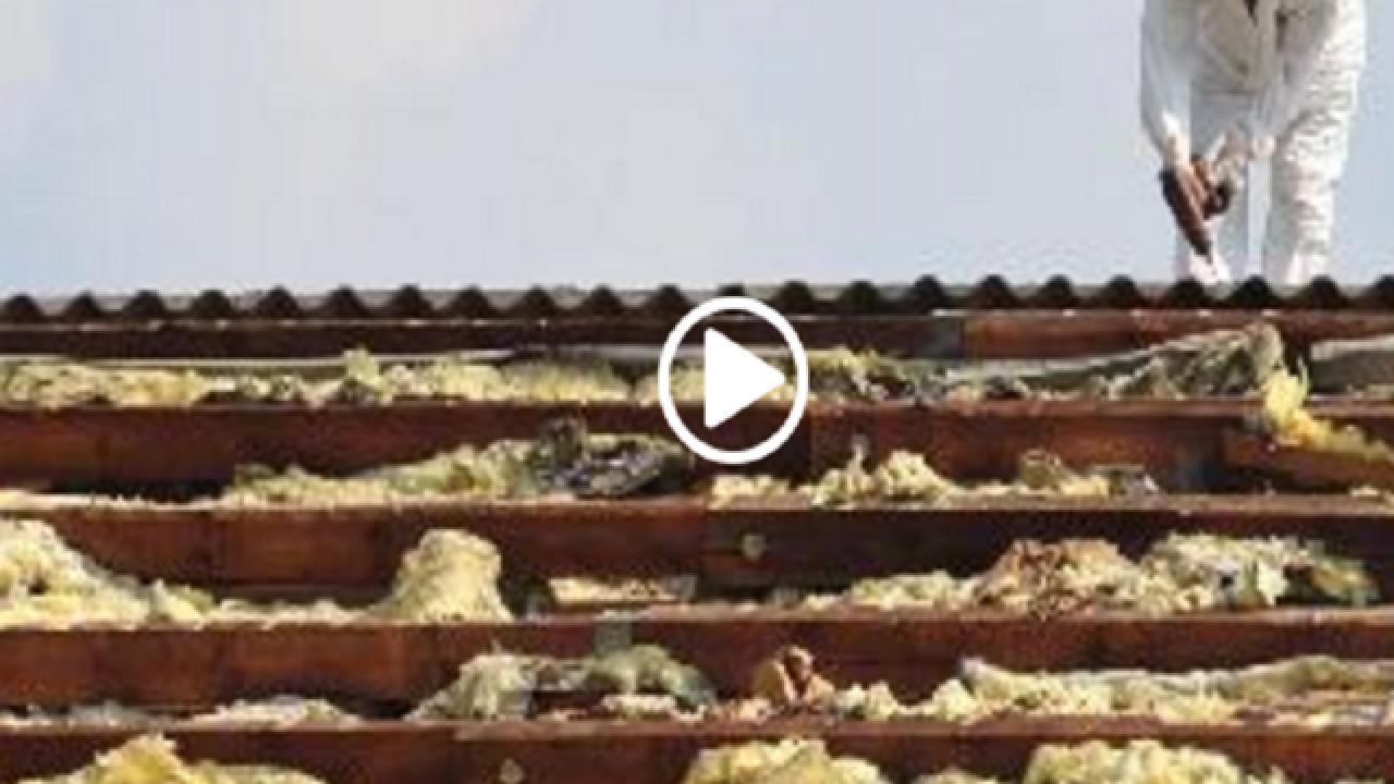 Mesothelioma survivor shares story for Global Asbestos Awareness Week