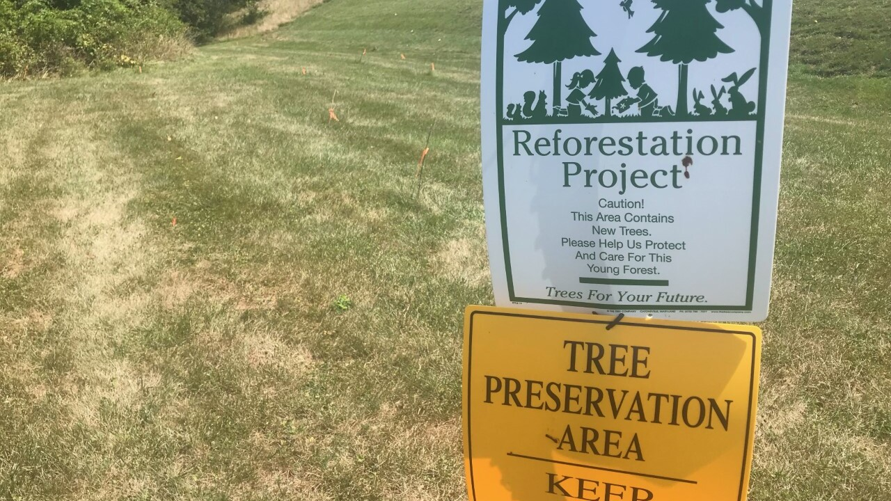 Conservationists claim Baltimore County butchered 1,000 trees