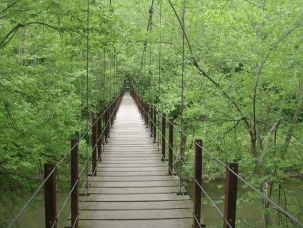 Swinging Bridge in Orange Grove section of Patapsco Valley State Park