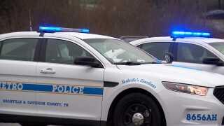 Police_daytime_cars.jpeg