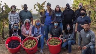 PV Harvest Crew.jpg