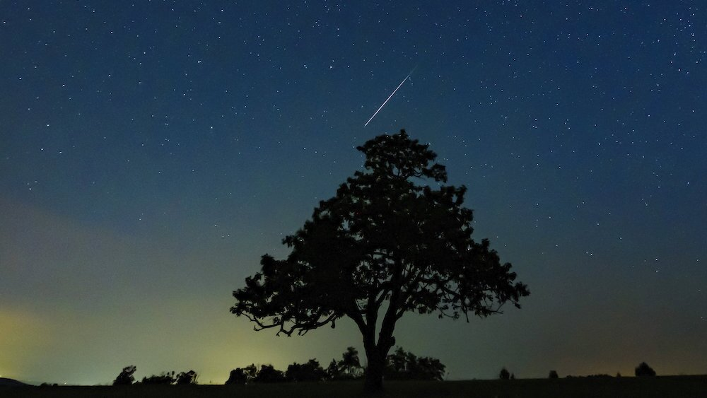 Two meteor showers to peak next week, meaning night sky could be full of activity