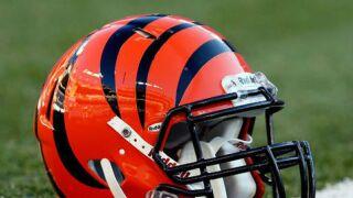 Bengals_helmet.jpg