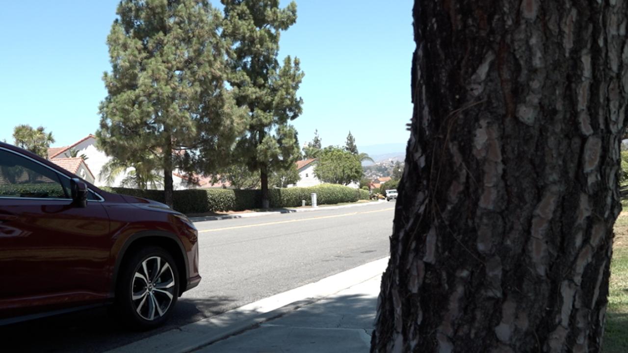 'Man in a white car' targeting women walking alone