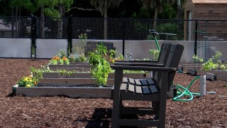 A new community garden at Meadows Park in Boca Raton on Oct. 13, 2021.jpg