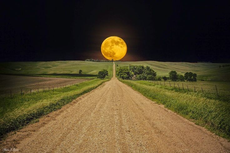 Harvest Moon Photo Credit To Maryland Dept. of Agriculture