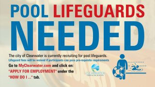 Clearwater lifeguards