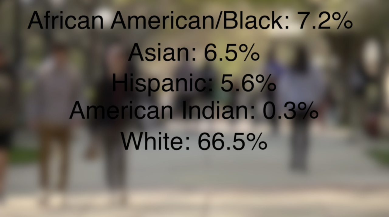 Race and ethnicity on MSU campus