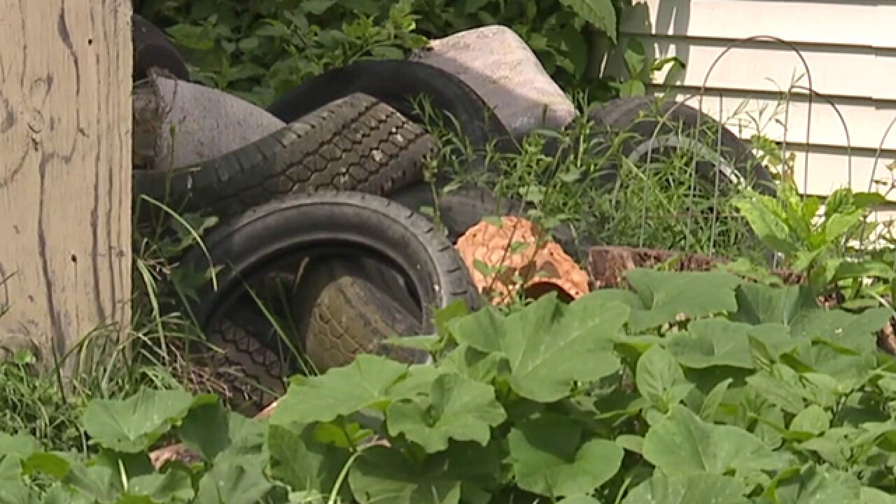 CLE councilwoman fights against illegal dumping