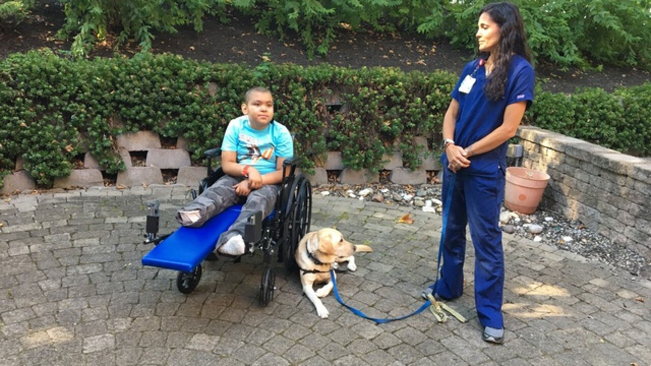 Therapy dog instills confidence in kids