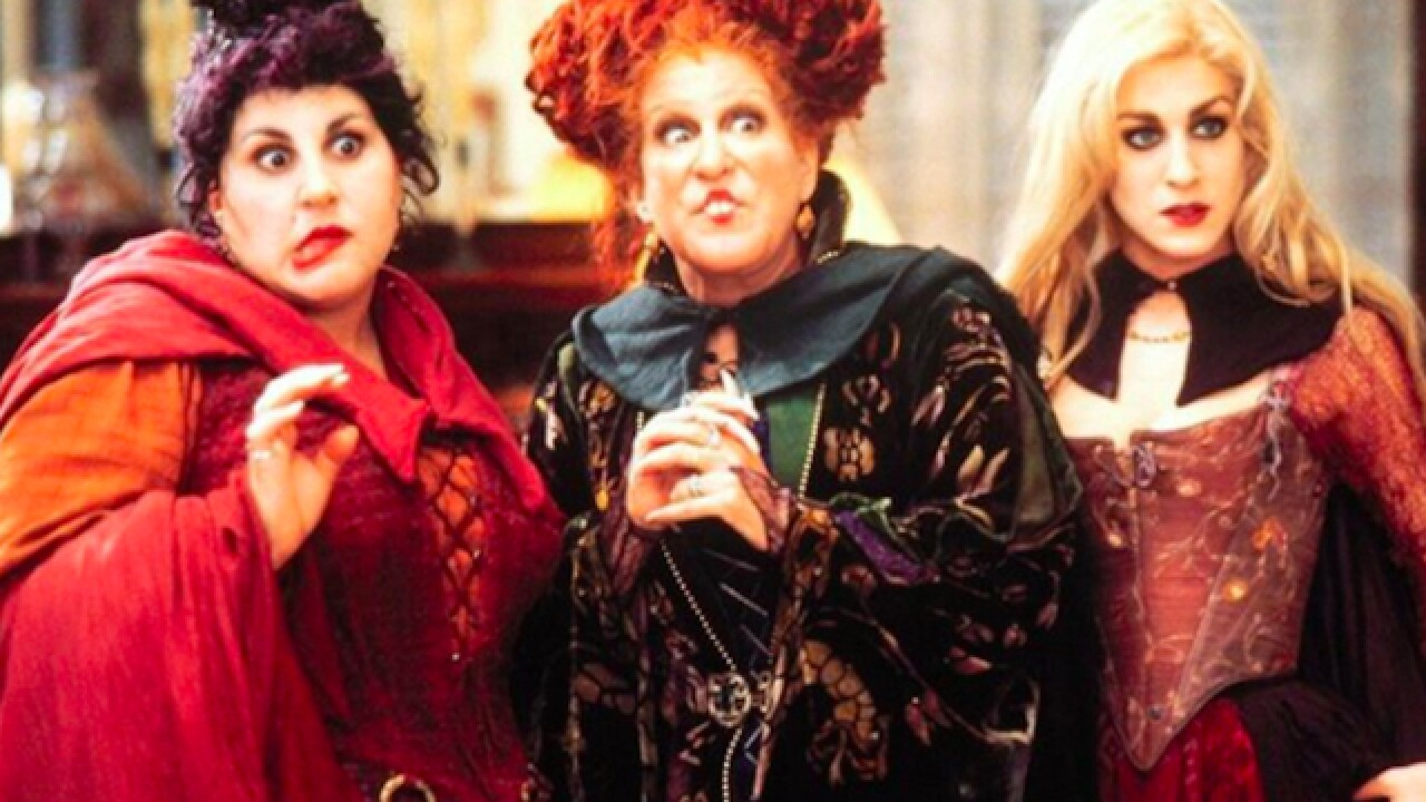 Disney is remaking 'Hocus Pocus'