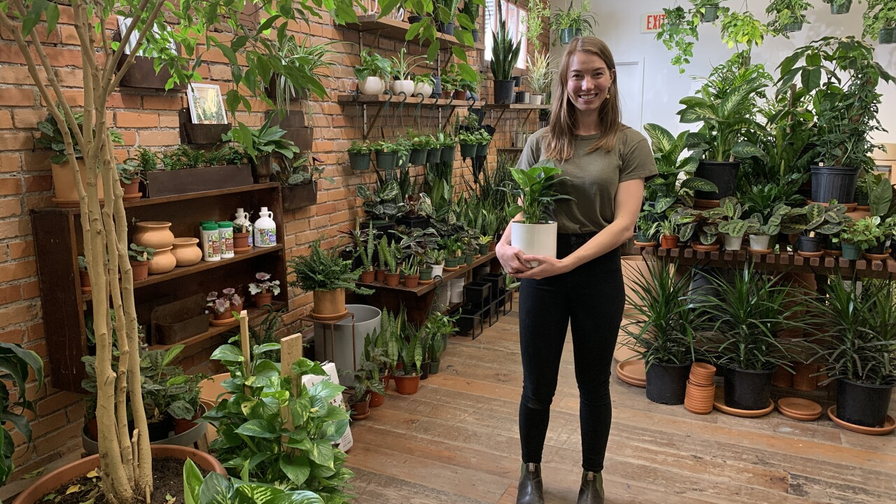 New Missoula plant shop finds success through speciality service